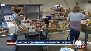 Cross-Lines pantry in KCK plays vital role feeding families as need soars [Video]