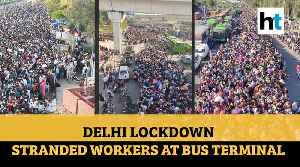 Amid lockdown, migrant workers swamp Delhi bus terminal, desperate to go home [Video]
