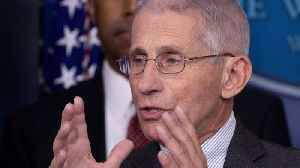 Fauci: Americans Should Expect Millions Of COVID-19 Cases, 100,000 Deaths [Video]