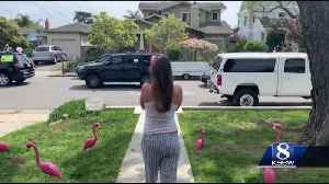 """Family surprises mommy-to-be with """"drive-thru baby shower"""" in Santa Cruz [Video]"""