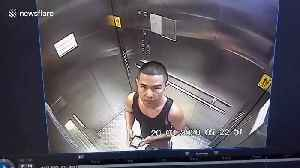 Passenger who wiped saliva inside train station lift in Thailand jailed for 15 days [Video]
