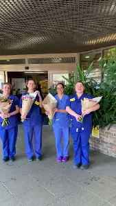 Florist delights nurses with deliveries of 50,000 flowers [Video]