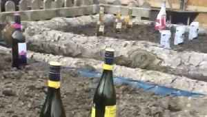 Champagne Taste! Funny Video Shows Man Planting Garden of Beer, Wine and Cider [Video]