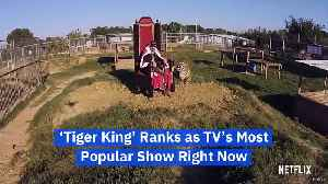 'Tiger King' Ranks as TV's Most Popular Show Right Now [Video]