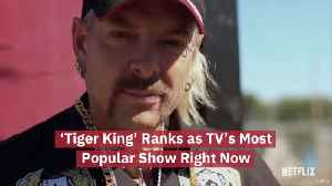 'Tiger King'  Is The Most Watched Show Right Now [Video]
