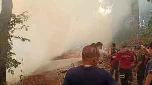 Fire crews battle forest fires spreading through northern Thailand [Video]