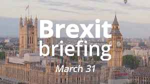 Brexit briefing: 275 days until the end of the transition period [Video]