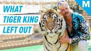 Here are 5 things Netflix's 'Tiger King' left out [Video]