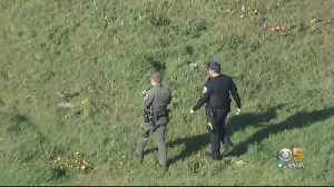 5-Year-Old Girl Hospitalized After Coyote Attack At Dublin Hills Regional Park [Video]