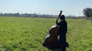 Lone musician finds solace in music - by playing in an empty field [Video]