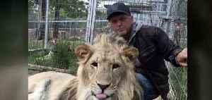 Jeff Lower's tigers still in Nevada [Video]