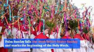 The Meaning Behind Palm Sunday [Video]