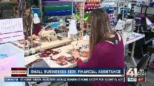 Small businesses navigate options for financial assistance amid COVID-19 crisis [Video]