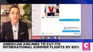 American Airlines to Cut International Summer Flights by 60 Percent [Video]