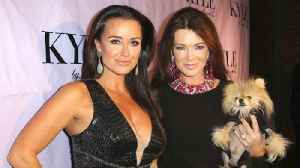 Kyle Richards 'Hid' From Lisa Vanderpump During Run-In with Her Ex-BFF [Video]