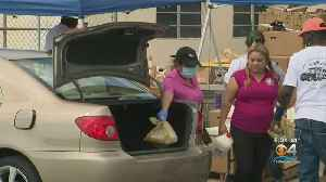 Hundreds Spend Long Hours In Line To Get Much-Needed Items At Food Distribution Sites [Video]