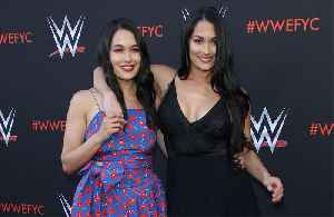 Nikki and Brie Bella have the same pregnancy symptoms [Video]