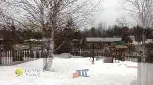 Snow gently falls on Manitoba backyard [Video]