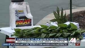 Church distributes palm leaves in drive-thru parade [Video]