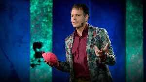 The health benefits of clowning around | Matthew A. Wilson [Video]