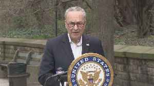Coronavirus Update: Schumer Calls For Military Official To Function As Medical Equipment Czar [Video]