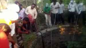 Hyena hauled out from well by forest officials in western India [Video]