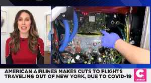 American Airlines Makes Cuts to Flights From NYC Due to Coronavirus [Video]