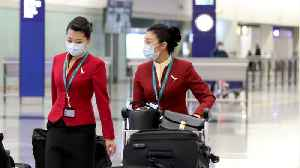 Flight Attendants Wants The Government To End Leisure Travel [Video]