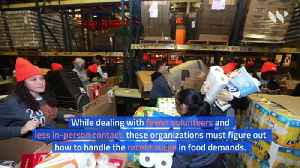 US Food Banks Strained by COVID-19 Crisis [Video]