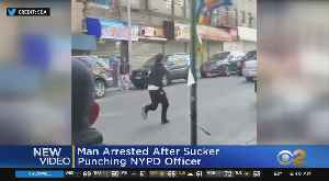 Man Caught On Camera Punching Officer [Video]