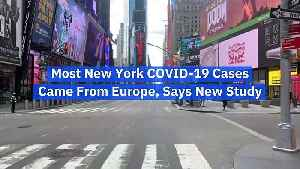 Most New York COVID-19 Cases Came From Europe, Says New Study [Video]