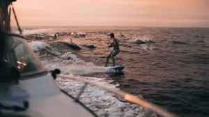 Pod of dolphins join wakeboarder under majestic sunset in epic slow motion [Video]