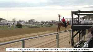 New COVID-19 testing site to open Friday at Pimlico Racecourse [Video]
