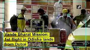 Vande Bharat Mission: 1st flight in Odisha lands from Dubai [Video]
