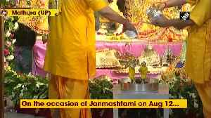 Watch: 'Mangal abhishek' performed at Mathura's Shri Krishna Janmasthan Temple [Video]
