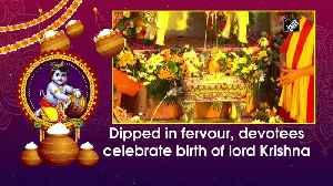 Dipped in fervour, devotees celebrate birth of lord Krishna [Video]