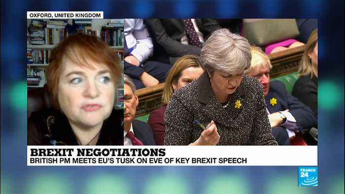 News video: BREXIT - Oxford''s Kalypso Nicolaïdis analysis