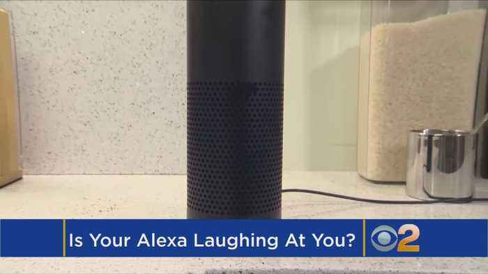 Alexa Is Laughing At You