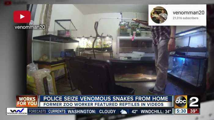 Police seize venomous snakes from home
