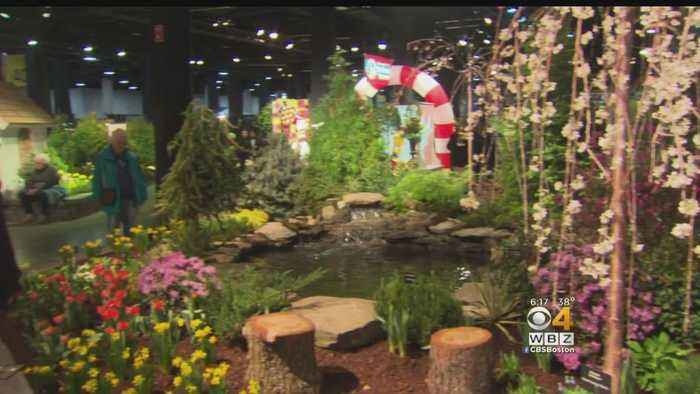 News video: Spring Arrives At Boston Flower And Garden Show