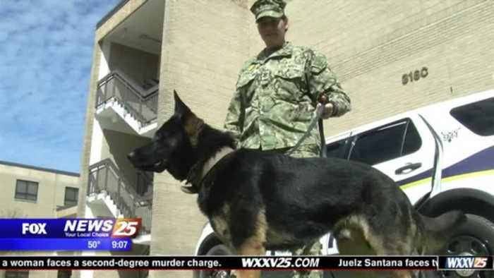 News video: Seabee Base gets K9s, increases security