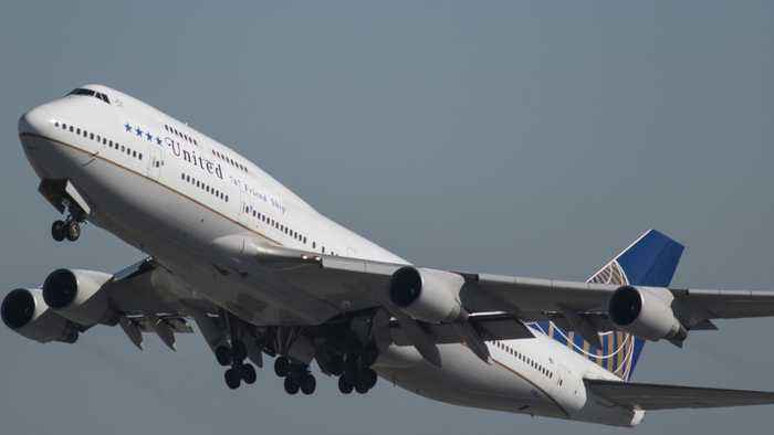United Airlines Mistakenly Sends Different Dog To Japan