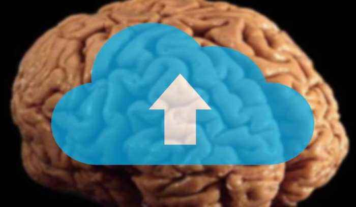 Upload Your Brain to the Cloud?