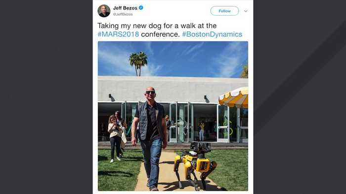 Jeff Bezos Takes A Stroll With Robot Dog One News Page Video