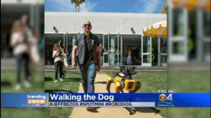 Trending Jeff Bezos Takes Robotic Dog For A One News Page Video
