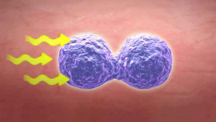 News video: Immunotherapy Advances For Lung Cancer Patients
