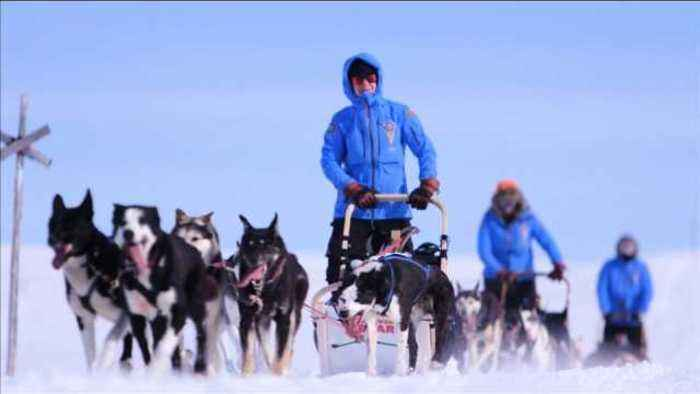 News video: Ordinary people drive dog-sleds 300km across arctic wilderness
