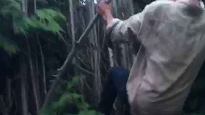 White shirt tries to climb bamboo fence breaks it and falls