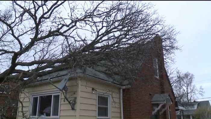 News video: Rain, Wind Send 100-Foot Tree Crashing into Cleveland Home