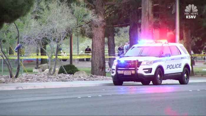 Executives Targeted In Company Picnic Shooting